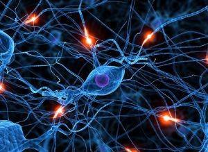 Regeneração Celular - Terapia Holística Cura com Amor